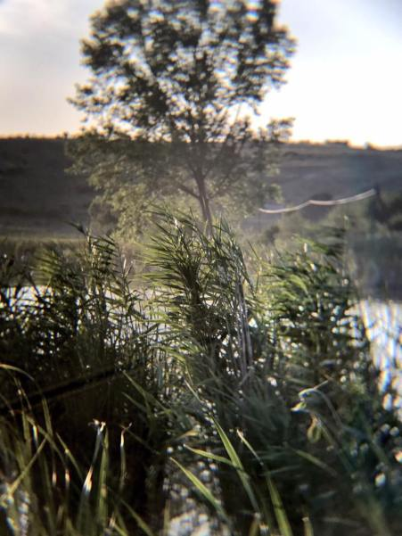 vlad vaida How To Take Amazing Pictures Using Your Phone